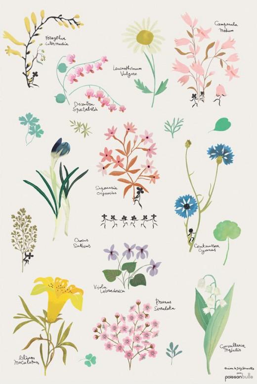 poster-fleurs-tinou-le-joly-senoville-multicolore_edited